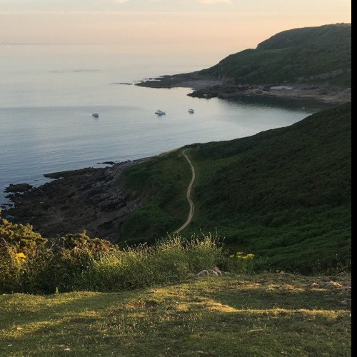 Sound Escape 29: relax on a Gower headland while gulls call above and a tractor gathers hay